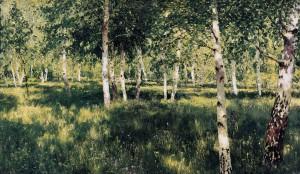 レビタン 白樺の林